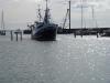 havnefest-200609-039